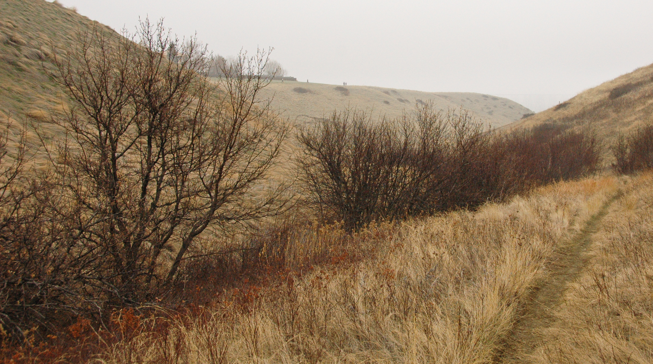 coulees-1