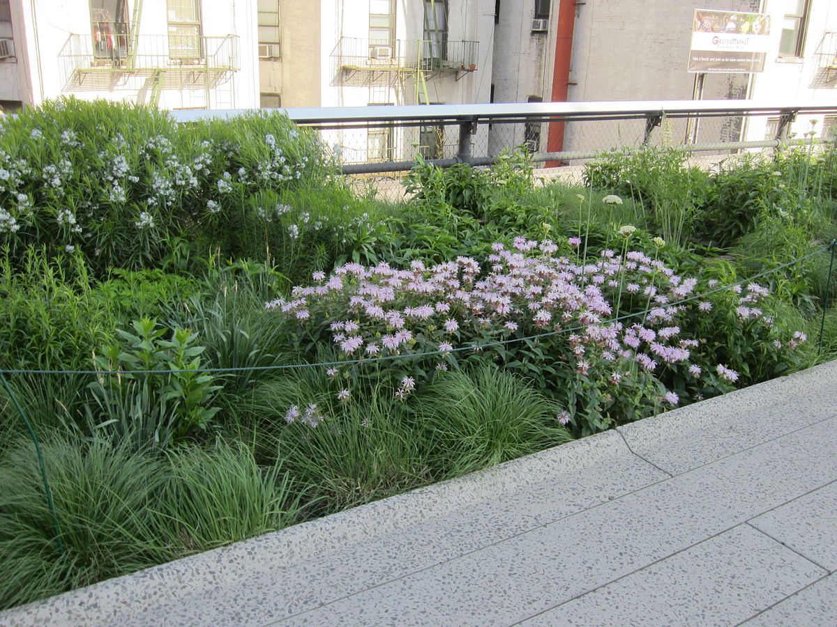 OUdolf High_Line,_New_York_City_(2014)_-_CCBY3_AnotherBeliever